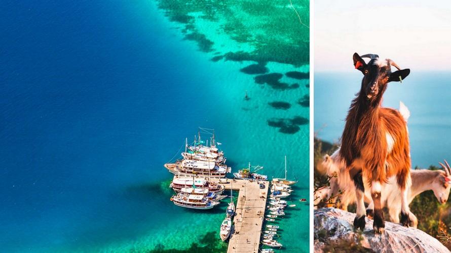 Crucero por Croacia: Virgen Naturaleza Dálmata