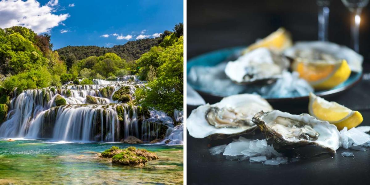 PN Krka+ostras de Ston-en Croacia con Ekorna