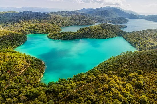 Mljet Croacia-Ekorna