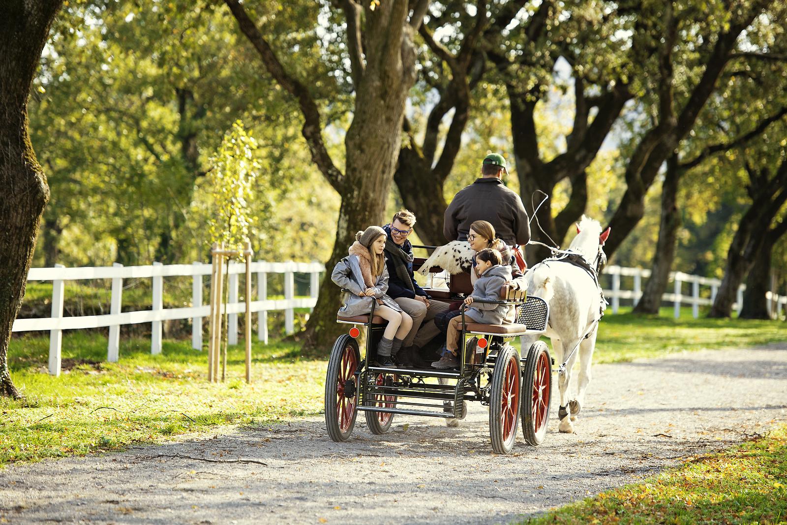 Lipica con los niños; foto: Dean Dubokovič; vir: www.slovenia.info