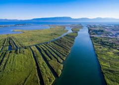 Delta del río Neretva, Croacia