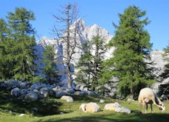 Sleme es uno de los picos más visitados
