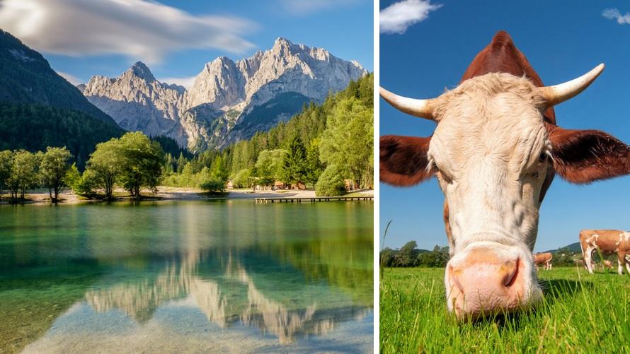 Viaje a los Alpes - Kranjska Gora, Eslovenia