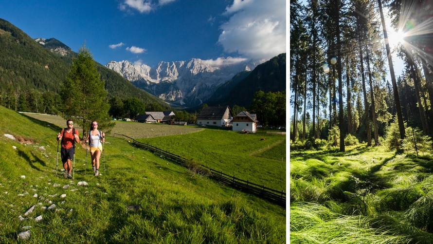 Senderismo: Vía Alpina, Pokljuka