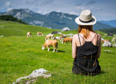 Velika planina, Eslovenia