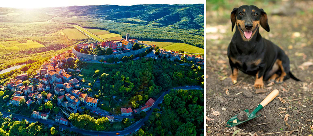 Luxury tourism in Croatia