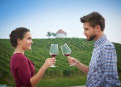 Degustación de vino esloveno