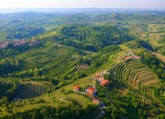 Región de Goriška Brda, Eslovenia