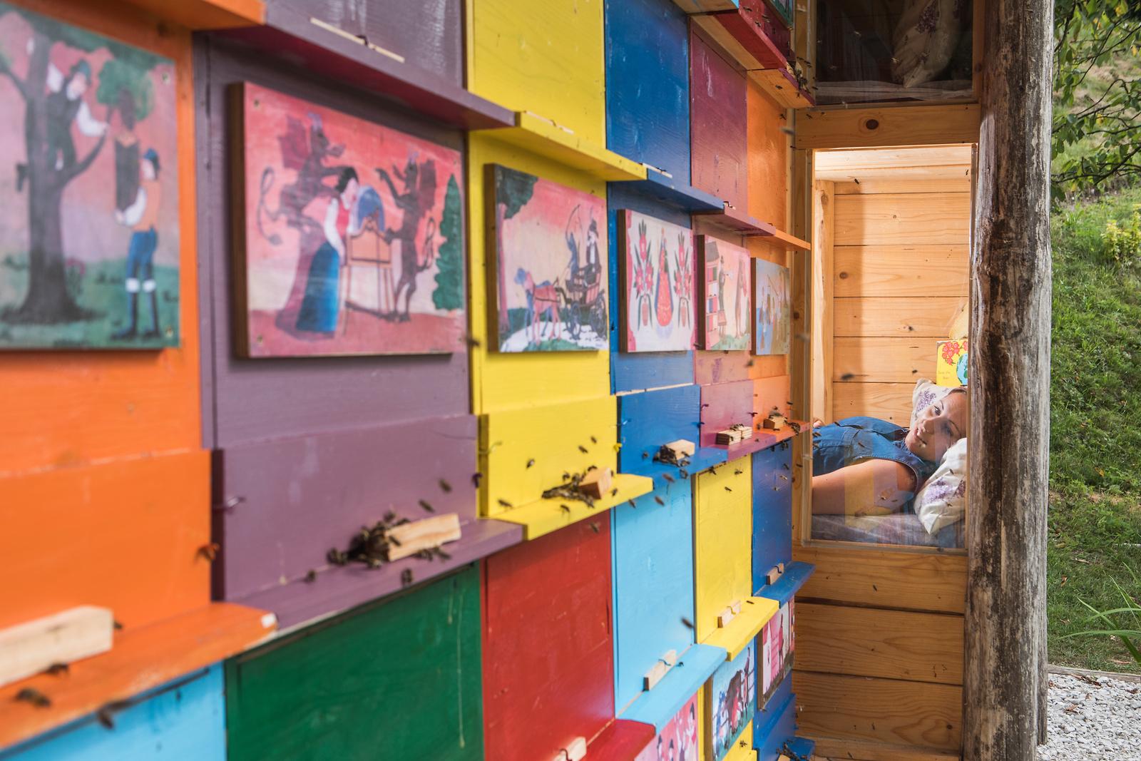 Cría de las abejas - apiturismo en Eslovenia