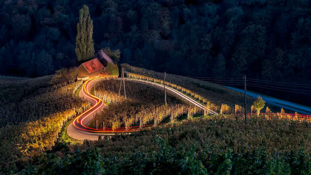 Visit the vineyards of Slovenia with Ekorna